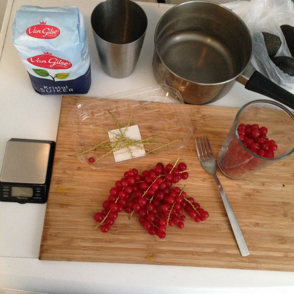 Homemade red currant syrup #2