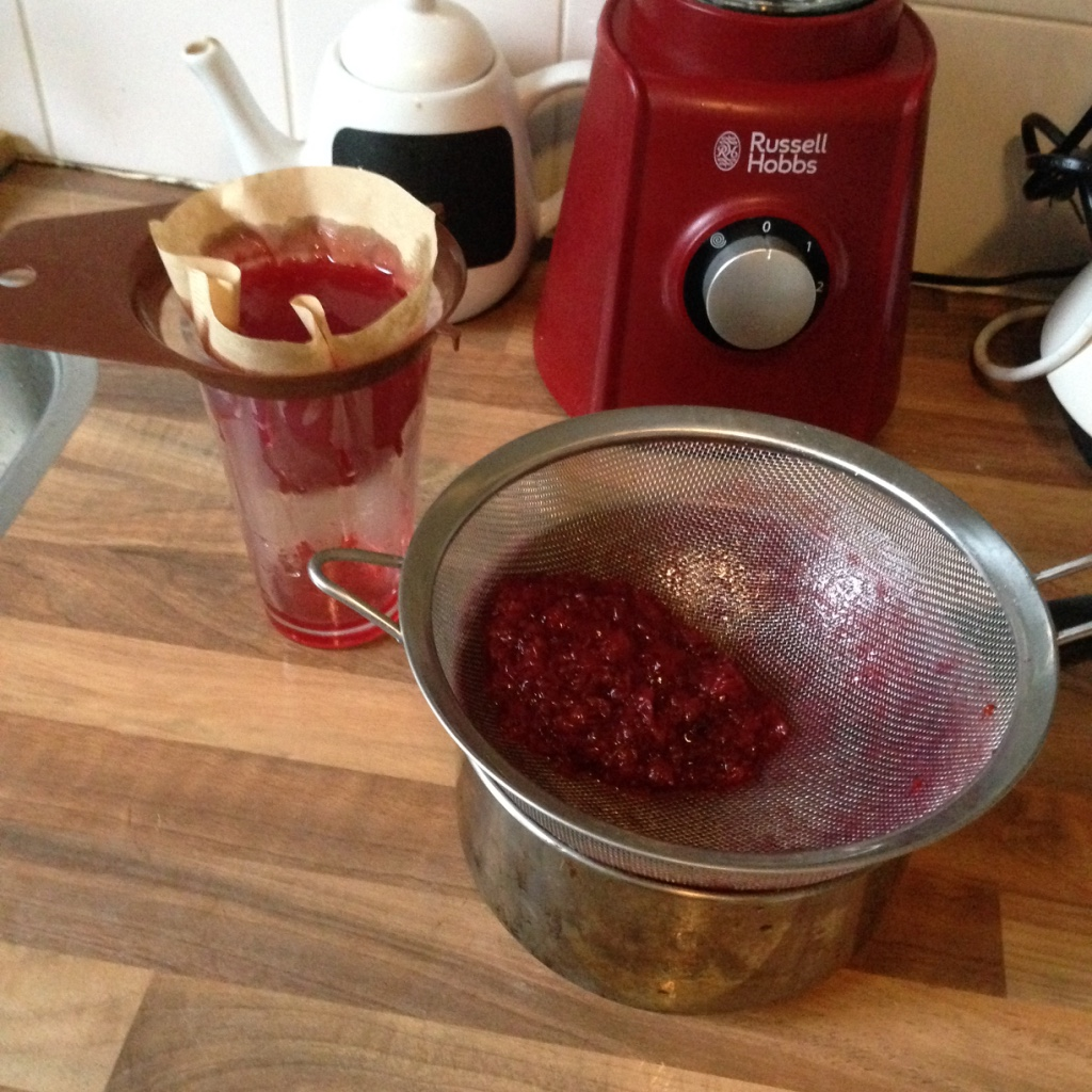 Homemade red currant syrup #5